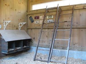 inside hen house