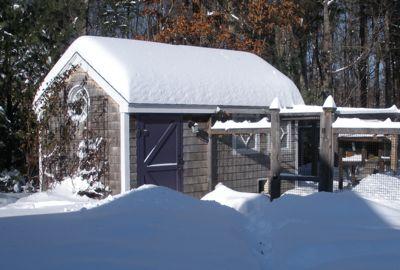 henhouse in snow